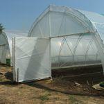A  Tartományi Mezőgazdasági Titkárság pályázata védett kertek (fóliasátrak) létesítésére és felszerelésére