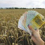 A Vajdasági Fejlesztési Alap pályázata mezőgazdasági hitelek odaítélésére